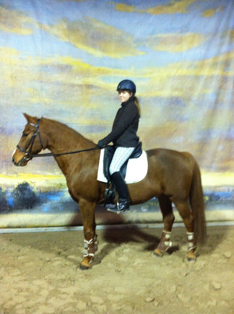 Boomer arrived in the spring of 2013 and blossomed into a BEAUTIFUL horse!